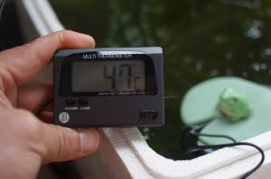 水草ストック槽の水面付近水温