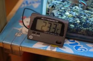 日動デジタル水温計