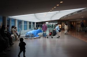 羽田空港第2ターミナルの牛