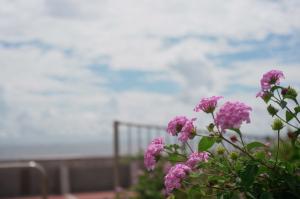 リネツ前の海