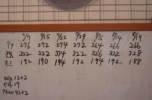 カブトニオイガメ体重記録